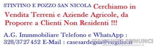 Stintino e Pozzo San Nicola cerchiamo in vendita terreni e aziende agricole !!!
