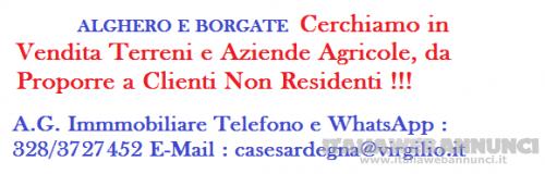 Alghero e Borgate cerchiamo in vendita terreni e aziende agricole da proporre a Clienti Non Residenti !!!