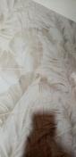 Eseguire lavori di costruzione ( tinteggiate, piastrelle posate, maioliche, controsoffitti, pareti in cartongesso, installazioni elettriche)