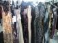 stock abbigliamento classic