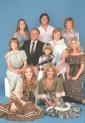 La famiglia Bradford serie televisiva anni 70/80 completa